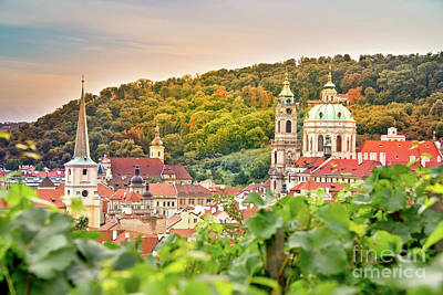 Wine Royalty-Free and Rights-Managed Images - Vineyard of Prague by Delphimages Photo Creations