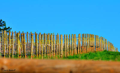 Photograph - Vineyard Poles 22607 Cr by Jerry Sodorff