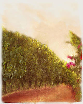 Vineyard Row And Roses Original by Eve Holloran