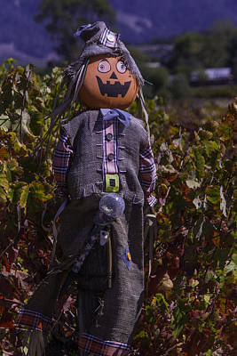 Grape Leaves Photograph - Vineyard Scarecrow by Garry Gay