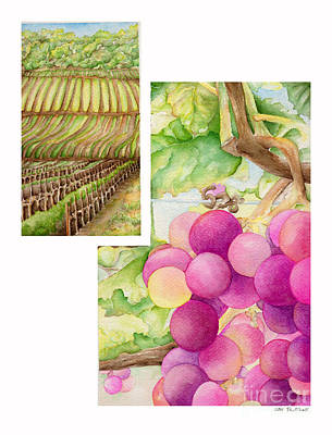 Chablis Painting - Vineyard3 by TR O'Dell