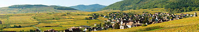 Haut Photograph - Vineyards In Autumn In The Morning by Panoramic Images