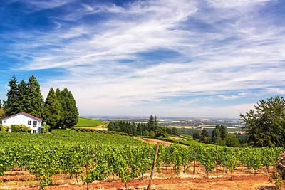 Pinot Noir Photograph - Vineyards In Oregon by Jess Kraft