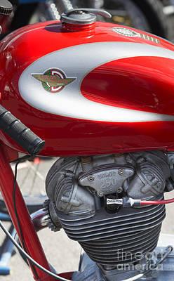 Vintage 250cc Ducati  Art Print