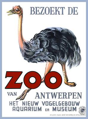 Ostrich Digital Art - Vintage Antwerp Zoo Ostrich Advertising Poster by Retro Graphics