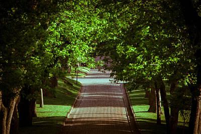 Photograph - Vintage Avenue by Parker Cunningham