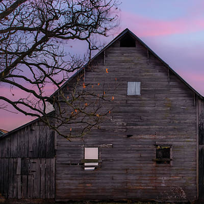 Photograph - Vintage Barn And Barren Tree - Square Art by Gregory Ballos