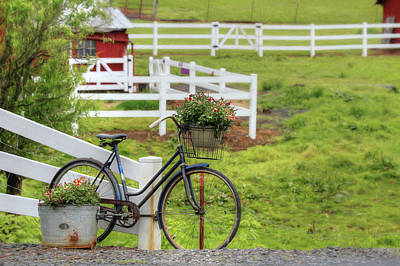 Photograph - Vintage Bicycle by Lori Deiter