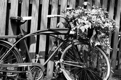 Photograph - Vintage Bicycle  by Michelle Joseph-Long