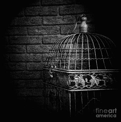 Photograph - Vintage Bird Cage by Andrey  Godyaykin
