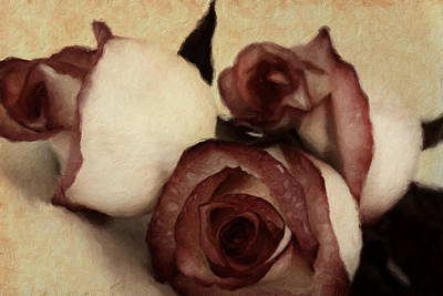 Digital Mixed Media - Vintage Blooms by Georgiana Romanovna