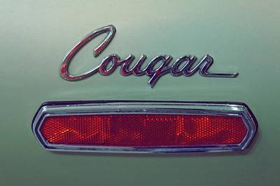 Photograph - Vintage Cougar Emblem by Patricia Strand