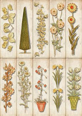 Drawing - Vintage Country Cottage Florals by Kate Greenaway