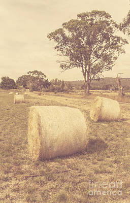 Bail Photograph - Vintage Country Farmyard In Outback Australia by Jorgo Photography - Wall Art Gallery