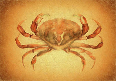 Crab Mixed Media - Vintage Crab by Dan Sproul