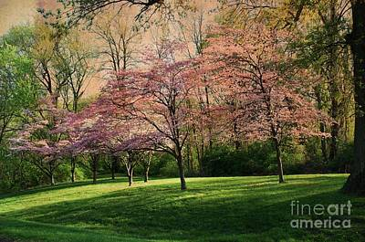 Photograph - Vintage Dogwood Spring by Luther Fine Art