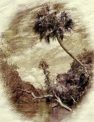 Photograph - Vintage Florida Landscape by Sheri McLeroy