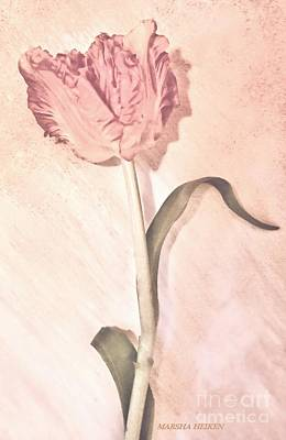 Photograph - Vintage Flower by Marsha Heiken