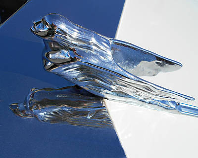 Photograph - Vintage Flying Lady Hood Ornament by Kathy M Krause