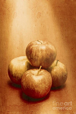 Kitchen Decor Photograph - Vintage Fruits by Jorgo Photography - Wall Art Gallery