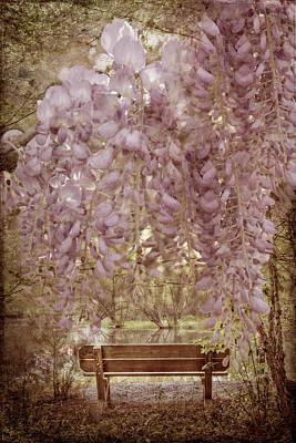 Photograph - Vintage Garden by Debra and Dave Vanderlaan