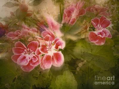 Photograph - Vintage Garden by Ella Kaye Dickey