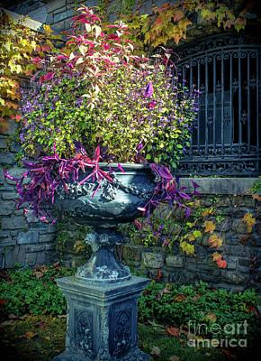 Photograph - Vintage Garden Urn by Colleen Kammerer