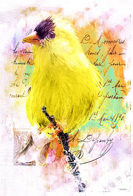 Photograph - Vintage Goldfinch by Tina LeCour