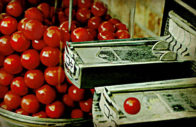Photograph - Vintage Gum Ball Machine by Diana Angstadt