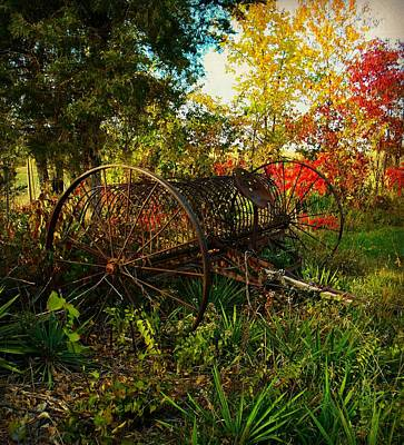 Vintage Hay Rake Art Print by Chris Berry