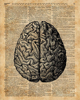 Anatomy Mixed Media - Vintage Human Anatomy Brain Illustration Dictionary Book Page Art by Jacob Kuch