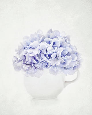 Sean Rights Managed Images - Vintage Hydrangea Royalty-Free Image by Kathi Mirto