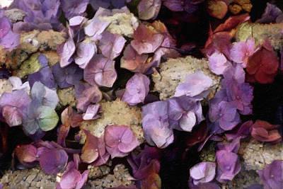 Mixed Media - Vintage Hydrangea by Susan Maxwell Schmidt