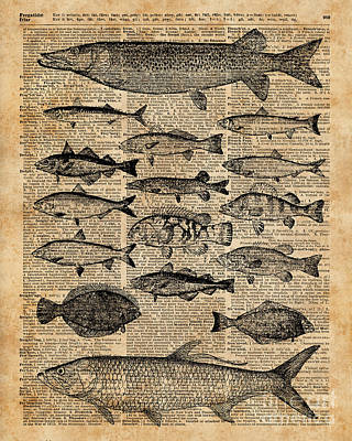 Vintage Illustration Of Fishes Over Old Book Page Dictionary Art Collage Art Print by Jacob Kuch