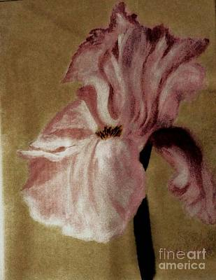 Vintage Iris Print by Marsha Heiken