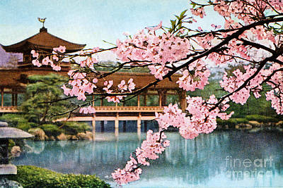 Cherry Blossoms Painting - Vintage Japanese Art 12 by Hawaiian Legacy Archive - Printscapes