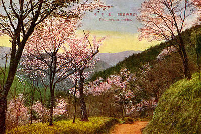Cherry Blossoms Painting - Vintage Japanese Art 14 by Hawaiian Legacy Archive - Printscapes