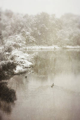Photograph - Vintage Lake Of The Isles Geese by Heidi Hermes