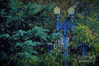 Photograph - Vintage Lamppost Tucked Away by Natalie Ortiz