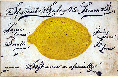 Fruit Stand Painting - Vintage Lemon Sign by Mindy Sommers
