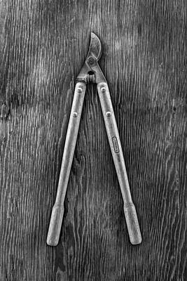 Photograph - Vintage Loppers by YoPedro