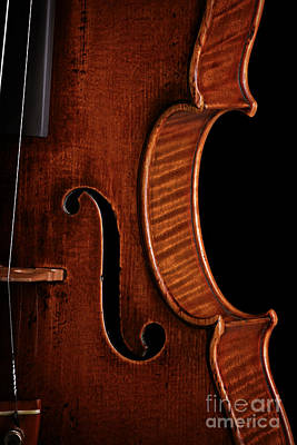 Photograph - Vintage Mahogany Violin Detail by John Stephens