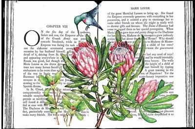 Mixed Media - Vintage Novel Florals With Hummingbird by Heidi Kriel