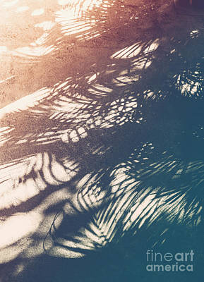 Photograph - Vintage Palm Tropical Background by Anna Om
