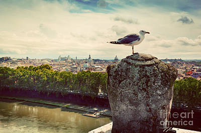 Castel Santangelo Wall Art - Photograph - Vintage Panorama Of Rome Italy by Michal Bednarek