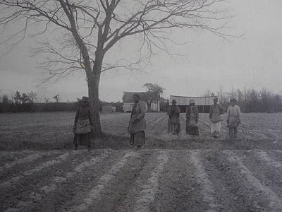 Vintage Photograph 1902 New Bern North Carolina Sharecroppers Art Print