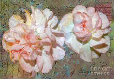 Photograph - Vintage Pink Carnations On 1916 Postcard by Nina Silver