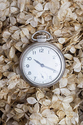 Photograph - Vintage Pocket Watch Over Dried Flowers by Edward Fielding