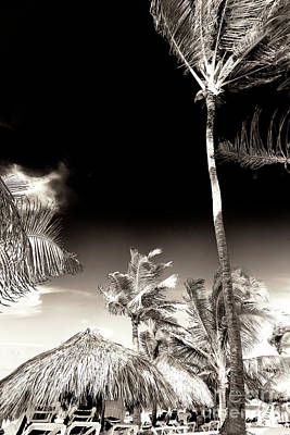 Photograph - Vintage Punta Cana by John Rizzuto