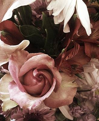 Photograph - Vintage Rose Flowers Everyday  by Ellen Levinson